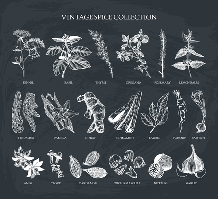 Vector set of hand drawn. Ingredients for your menu or kitchen design