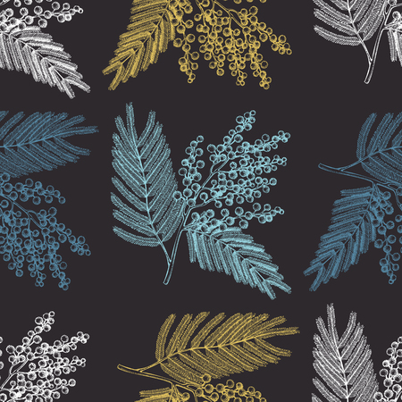 Seamless pattern with hand drawn Mimosa sketch. Vector background with decorative Silver Wattle tree elements. Vintage acacia illustration. Vector Illustration