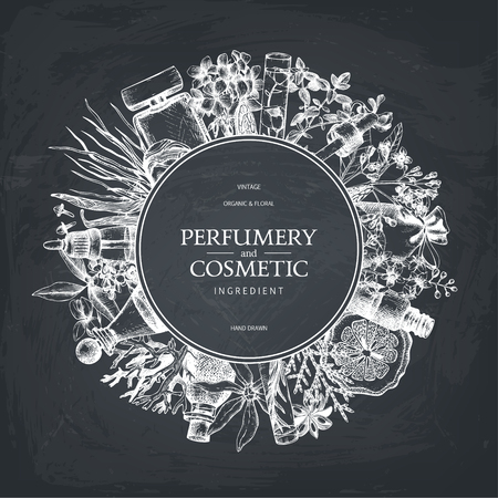 Vintage template. Ink hand drawn design with fruits and fruits on chalkboard .. Vector illustration with highly detailed perfumery and cosmetics ingredients sketch. Иллюстрация