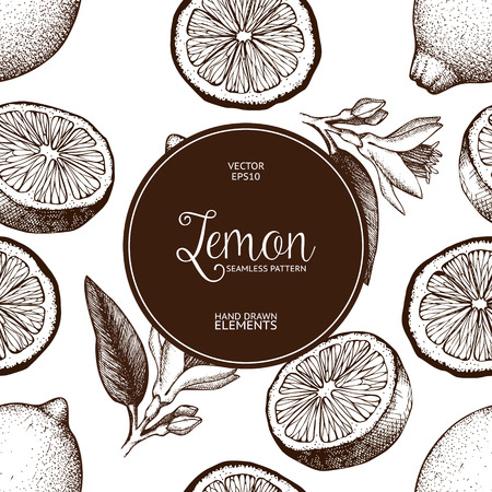 Lemon fruit, flowers, slice and leaves sketch. Vintage citrus background isolated on white  イラスト・ベクター素材
