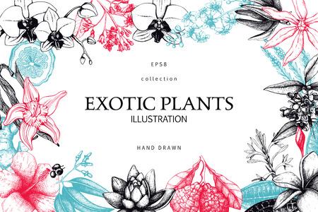 Vektorkarte oder Einladung mit Hand gezeichneter exotischer Pflanzenillustration. Dekorativer Rahmen mit weißen Blumen. Vintage-Vorlage.