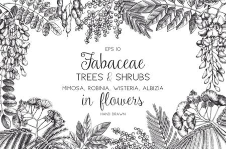 Vintage Bäume und Blumen Valentinstag oder Hochzeit Design-Vorlage auf Tafel. Vektorgrußkarte mit Robinie, Silberwattle, Albizia-Skizze. Vektorgrafik