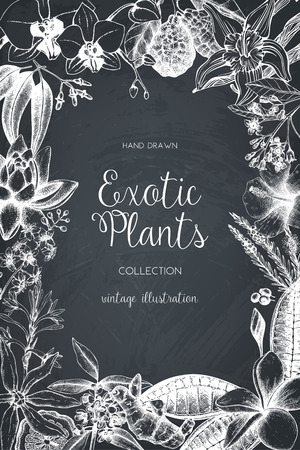 Exotic background with hand drawn plants sketch. Vector tropical flowers, leaves and fruits design. Vintage template with botanical elements on chalkboard. Illustration