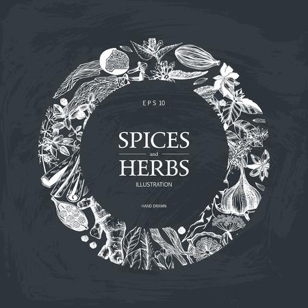 Projekt karty wektor z ręcznie rysowane przyprawy i zioła. Dekoracyjne tło z rocznika przyprawy ad zioła szkic na tablicy