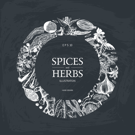 Vector card design with hand drawn spices and herbs. Decorative background with vintage spices ad herbs sketch on chalkboard