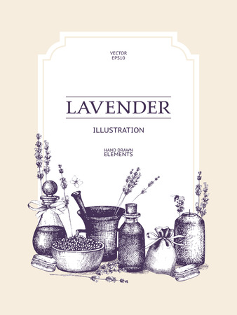 Vector design with hand drawn lavender illustration isolated on white. Organic plants sketch background. Natural cosmetics ingredients. Vintage template