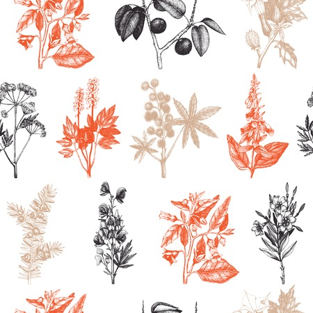 Vector seamless pattern with colorful hand drawn poisonous plants.