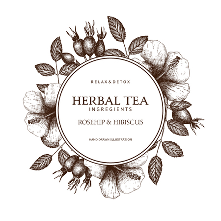 Vintage frame design with herbal tea ingredients. Decorative vector background with hand drawn herbs and spice sketch isolated on white. Ilustração