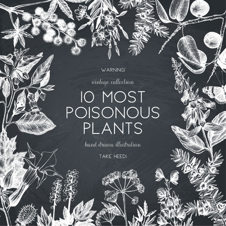 Vector frame design with hand drawn poisonous plants illustration. Vintage noxious plants sketch background. Botanical template with poisonous flowers on chalkboard Иллюстрация
