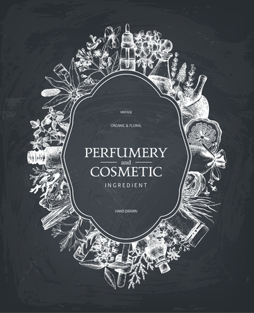 Vintage template. Ink hand drawn design with fruits and fruits on chalkboard .. Vector illustration with highly detailed perfumery and cosmetics ingredients sketch. Ilustração
