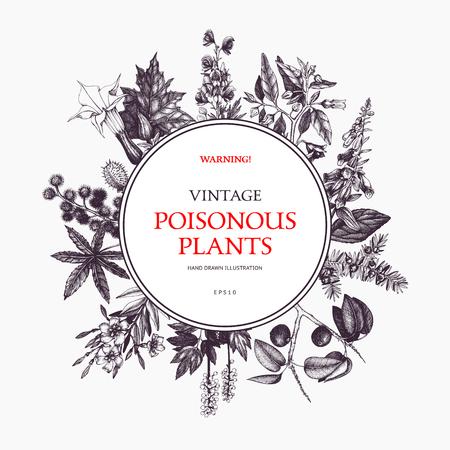 Diseño de marco de vector con plantas venenosas dibujadas a mano. Fondo de dibujo de plantas nocivas vintage. Plantilla botánica aislada en blanco. Ilustración de vector