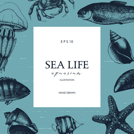 Mussels, fish, crab, starfish, squid, jellyfish, lobster sketch. Illustration