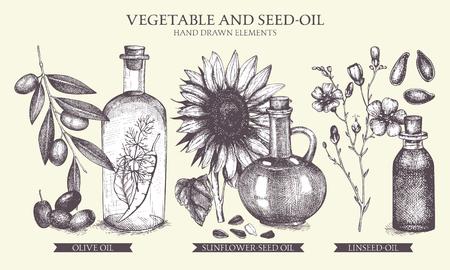 Vector card design. Vintage healthy food illustration. Decorative engraved oil sketch isolated on white. Illustration