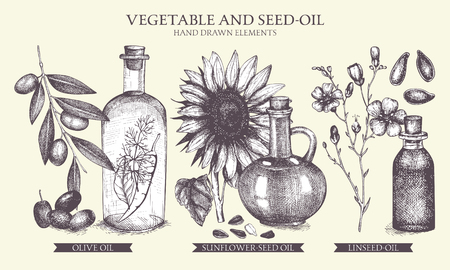 Vector card design. Vintage healthy food illustration. Decorative engraved oil sketch isolated on white. Illusztráció