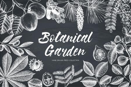 Wektor wzór z ręcznie rysowane oddział, liście, owoce szkic. Rama z elementami botanicznymi na tablicy. Szablon retro. Ilustracja drzew ogrodowych Ilustracje wektorowe