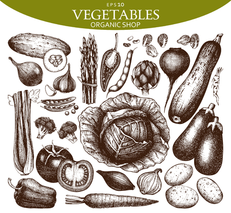 Vector Collection of Hand drawn vegetables sketch. Healthy Food illustration set. Vintage Farm fresh products in pastel colors. Çizim