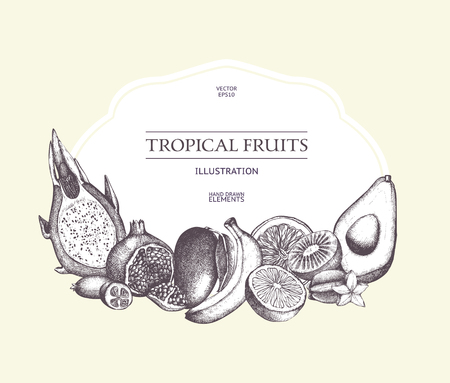 Vintage card design with exotic fruits sketch. Healthy food retro frame for menu. Tropical plants template, detox program