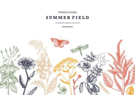Summer wild flowers background. Floral card or invitation design. Hand drawn herbs, weeds and meadows. Vintage flowers with insects drawings. Vector template with botanical elements. Outlines  Vector illustration. Иллюстрация