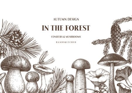 Autumn forest design. Hand drawn edible mushroom and conifers sketches. Perfect for greeting cards, invitations, label, packaging, banners.  Botanical background. Иллюстрация