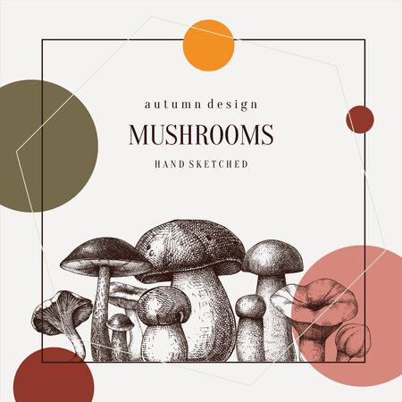 Forest mushrooms trendy design. Hand drawn healthy food template. Autumn plants sketches. Perfect for recipe, menu, label, icon, packaging. Vintage mushrooms background. Botanical illustration. Фото со стока - 128609986