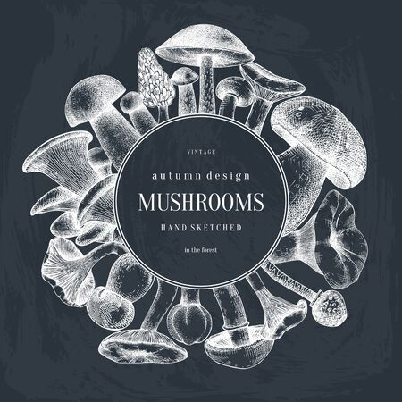 Vintage wreath design with hand drawn mushrooms. Autumn forest vector background. Perfect for recipe, menu, label, icon, packaging. Vintage mushrooms template with geometric elements.