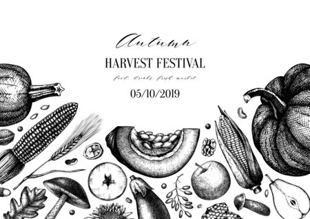 Autumn harvest festival vector design.