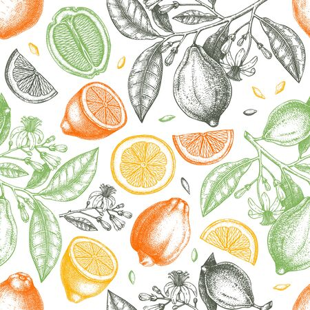 Ink hand drawn citrus fruits backdrop. Çizim