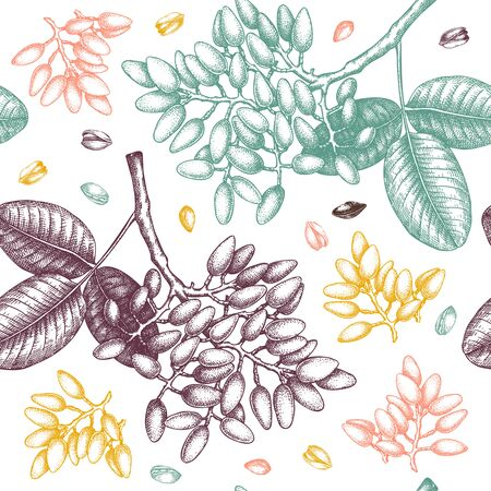 Pistachio  seamless pattern. Hand drawn culinary Nut trees sketch. Vectores