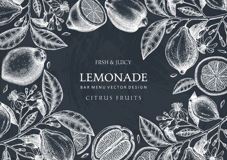 Hand drawn citrus fruits frame design on chalkboard.  Vector lemons background with fruits, flowers, seeds, leaves sketches. Perfect for banners, greeting cards, invitations, prints. Lemon outlines template Çizim