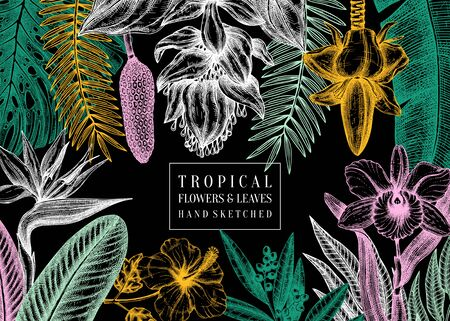 Exotic flora vector frame. Tropical plants, exotic flowers, citrus fruits, palm leaves sketches. Tropical background with orchid, monstera, bird of paradise, ginger, laurel, hibiscus, banana palm illustrations.