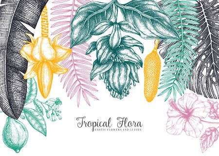 Botanical summer design. Vector frame with tropical plants, exotic flowers, citrus fruits, palm leaves. Tropical flora colorful background.