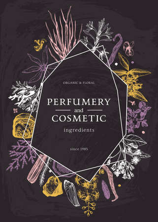 Hand drawn perfumery and cosmetics ingredients trendy design on chalk board. Decorative background with vintage aromatic plants, fruits, spices, herbs for perfumery. Organic cosmetics design template on chalkboard.