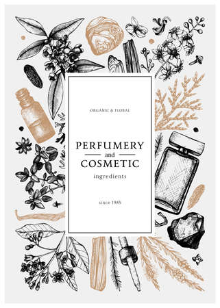 Hand drawn perfumery and cosmetics ingredients vintage banner. Decorative background with aromatic plants, fruits, spices, herbs for perfumery. Organic cosmetics design template. Aromatic plants flyer
