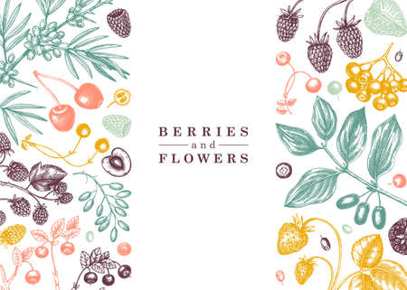 Hand drawn berries greeting card or invitation in engraved style. Wild berries and flowers frame design. Hand drawing. Vintage forest plants sketch. Summer berries outline. Healthy food ingredient.
