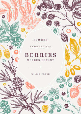 Summer berries trendy design. Hand drawn berry illustrations. Fresh fruits: strawberry, cranberry, currant, cherry, bilberry, raspberry, blueberry hand drawings. Vintage botanical frame template. Collage elements