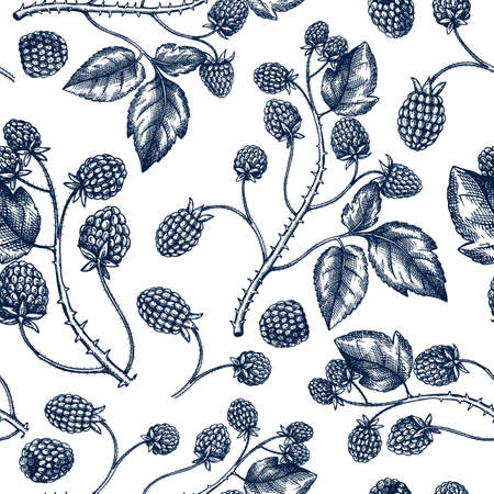 Hand drawn blackberries vector backdrop in engraved style. Wild berries seamless pattern. Hand drawing. Vintage forest berry sketch. Blackberries plant background. Healthy food ingredient