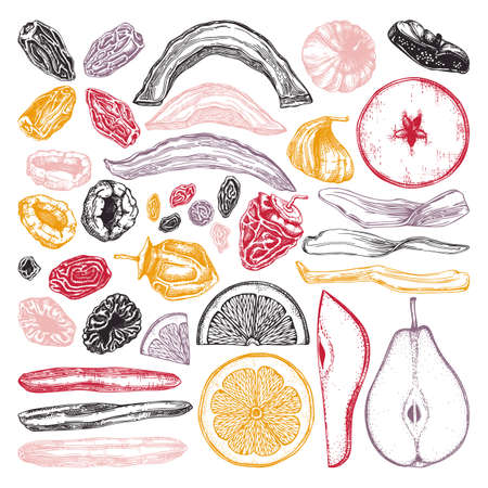 Dried fruits and berries collection. Hand drawn dehydrated fruits sketches of dried mango, melon, fig, apricot, banana, persimmon, dates, prune, raisin. For vegan food, snacks, healthy breakfast, granola, desserts.