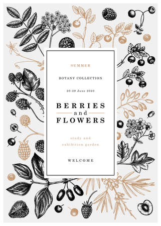 Hand drawn berries vector design in vintage style. Wild berries and flowers greeting card or invitation template. Hand drawing. Vintage forest berry illustration.  Healthy food ingredient Vettoriali