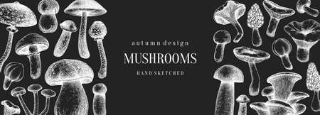 Vintage mushrooms banner on chalkboard. Edible mushrooms vector background. Hand drawn food drawings. Forest plants sketches. Perfect for recipe, menu, label, icon, packaging,  Botanical template