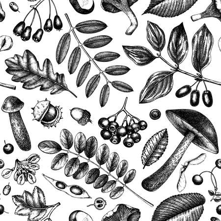 Autumn forest plants seamless pattern. Vector background with mushrooms,  leaves, nuts, berries sketches. Vintage fall season design. Botanical illustrations. Thanksgiving day template.