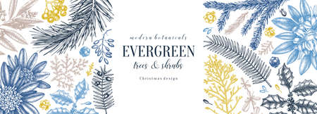 Christmas banner design in color. Vector frame with hand sketched winter flowers, evergreen plants and conifers. Vintage background with botanical elements. Engraved style vintage winter illustration. Иллюстрация