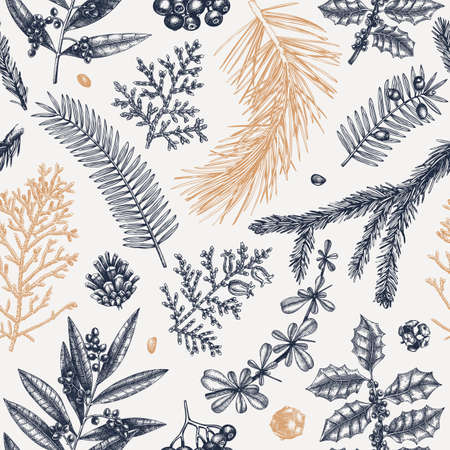 Merry Christmas seamless pattern. With vintage winter flowers, evergreen, conifers plants. Vector design with hand drawn botanical elements. For wrapping paper, greeting cards, banners, packaging.