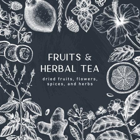 Hand sketched herbal tea ingredients design on chalkboard. Vintage herbs, leaves, flowers, fruits hand drawings background. Perfect for recipe, menu, label, packaging. Herbal tea template.