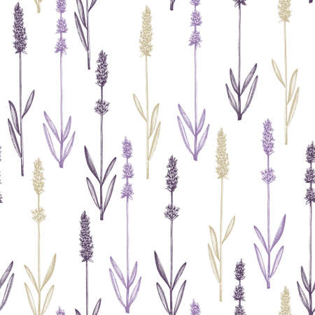 Ink hand drawn lavender backdrop. Vector herbs seamless pattern with lavender sketches. Herbal tea ingredients. Perfect for cosmetic, perfumery packing, fabric, wrapping paper, prints.