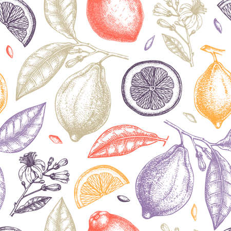 Ink hand drawn citrus fruits backdrop. Vector lemons seamless pattern with citrus fruits, flowers, seeds, leaves, branches sketches. Perfect for packing, greeting cards, invitations, prints. Stock Illustratie