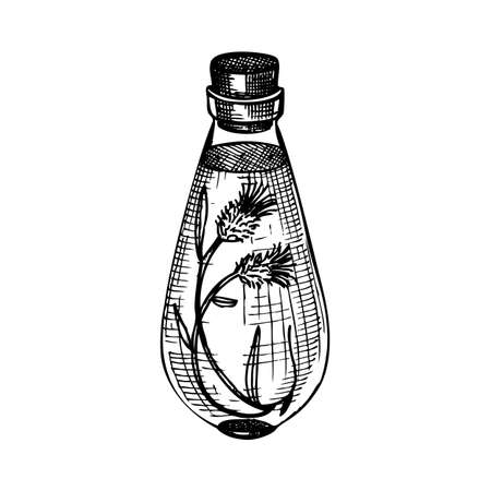 Hand sketched bottles with flower extract in vintage style. Glassware hand drawing for cosmetic or perfume. Alchemy laboratory equipment sketch. Magic, witchcraft and mysticism glassware illustration