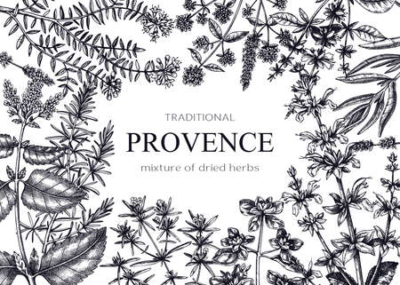 Traditional Provence herbs banner design. Ilustracja