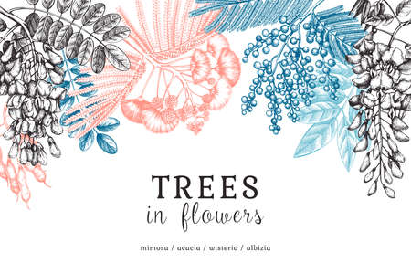 Vector banner with hand-sketched trees in flowers. Vintage illustrations on blooming wisteria, mimosa, albizia, acacia. Floral card or invitation design in color.
