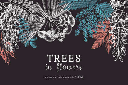 Vector banner with hand-sketched trees in flowers. Chalkboard design. Vintage illustrations on blooming wisteria, mimosa, albizia, acacia. Floral greeting card or invitation on dark blue background