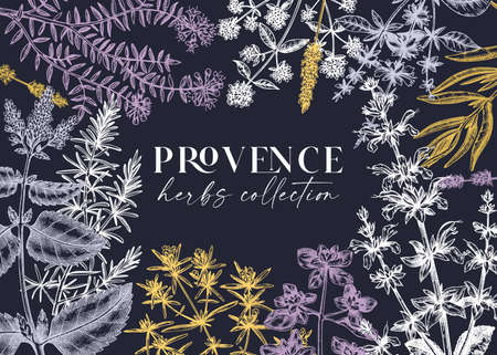 Traditional Provence herbs banner design. Vettoriali